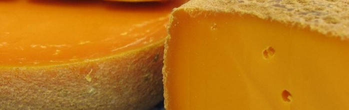 Lafayette! Come back and save the mimolette!